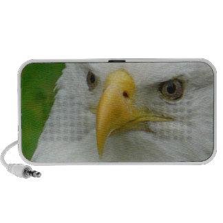 Eagle Eyes PC Speakers