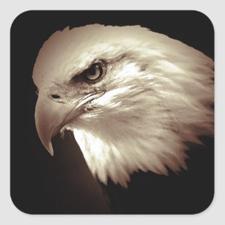 Eagle Eyes Square Sticker