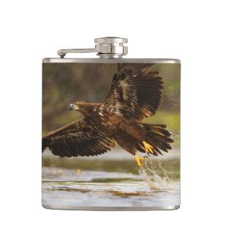 eagle hip flasks