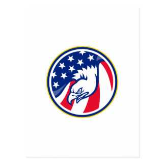 eagle flying american stars stripes flag postcard