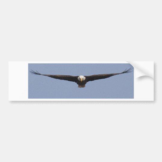 Eagle head-on colour bumper sticker