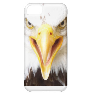 Eagle iPhone bird of prey case. iPhone 5C Case