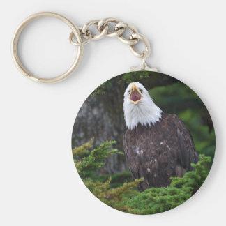 eagle basic round button key ring