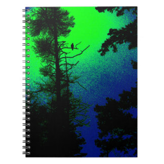 Eagle Notebook