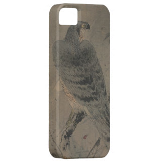 Eagle on a Maple Branch iPhone 5 Cases