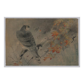 Eagle on a Maple Branch Posters
