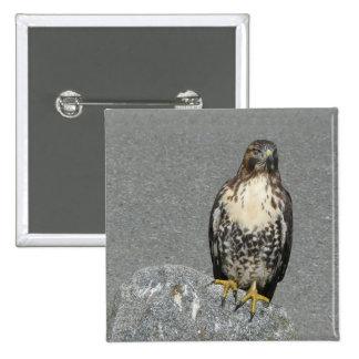 Eagle on the Rock 15 Cm Square Badge