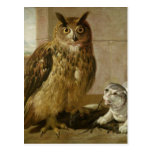 Eagle Owl and Cat with Dead Rats Postcard