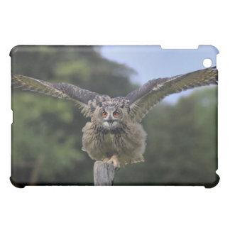 Eagle Owl (Bubo bubo) Case For The iPad Mini