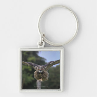 Eagle Owl (Bubo bubo) Key Ring