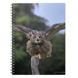 Eagle Owl (Bubo bubo) Spiral Notebook