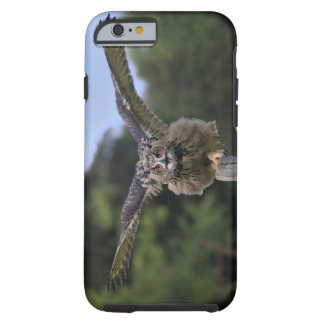 Eagle Owl (Bubo bubo) Tough iPhone 6 Case
