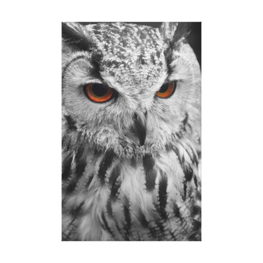 Eagle Owl Canvas Stretched Canvas Print