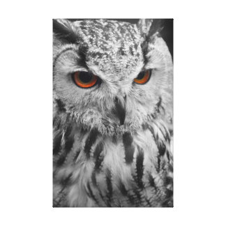 Eagle Owl Canvas Gallery Wrapped Canvas