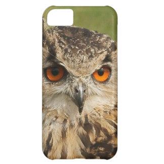 Eagle owl iPhone 5C cover