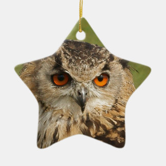Eagle owl ceramic star decoration