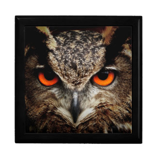 Eagle-Owl Gift Box