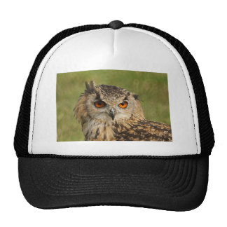 Eagle owl trucker hats