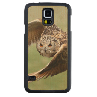 Eagle Owl In Flight Carved Maple Galaxy S5 Case