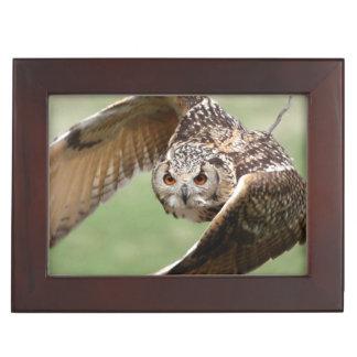 Eagle Owl In Flight Keepsake Box