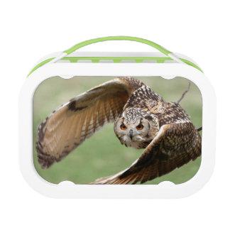 Eagle Owl In Flight Lunch Box
