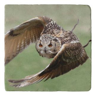 Eagle Owl In Flight Trivet