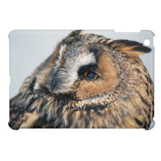 Eagle Owl iPad Mini Cover