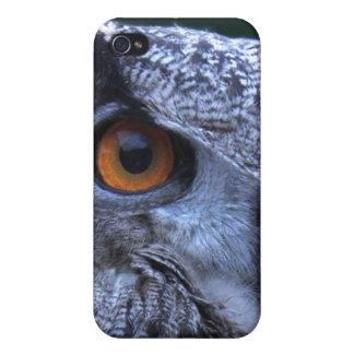 Eagle Owl iPhone4 Case iPhone 4/4S Covers