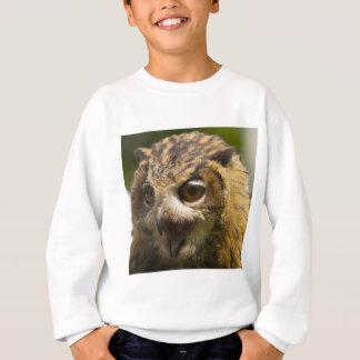 eagle owl.jpg sweatshirt