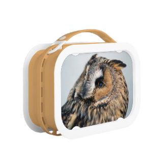 Eagle Owl Lunch Box