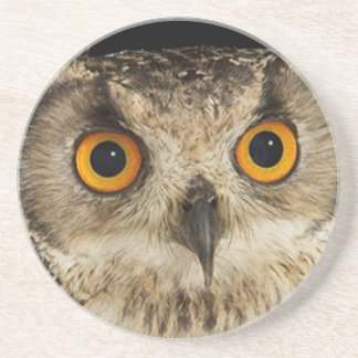 """""""Eagle Owl"""" matching kitchen accessories Coaster"""