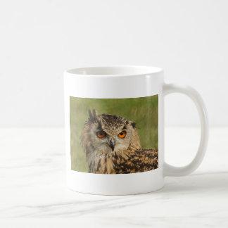 Eagle owl coffee mugs