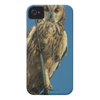 Eagle Owl on a yacht iPhone 4 Case