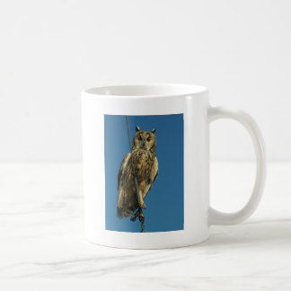 Eagle Owl on a yacht Coffee Mug