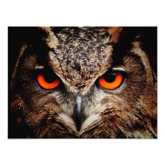 Eagle Owl Photo Art