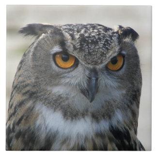 Eagle Owl Photo Tile