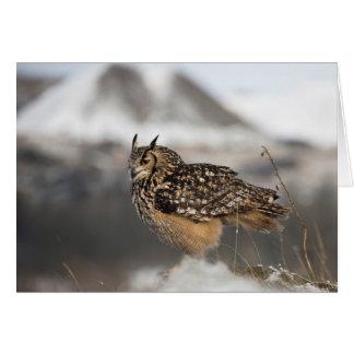 Eagle Owl Photograph Greeting Card
