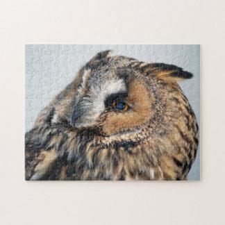 Eagle Owl Puzzle