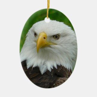 Eagle Photograph - North American Bald Eagle Christmas Ornament