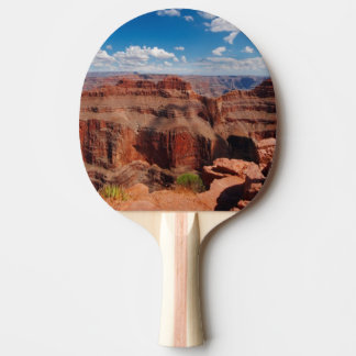 Eagle Point Ping Pong Paddle