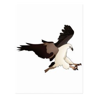 EAGLE POST CARDS