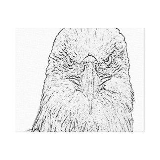 Eagle Stare canvas