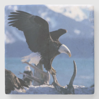 Eagle Stone Coaster