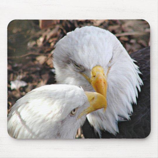 eagles mouse mat