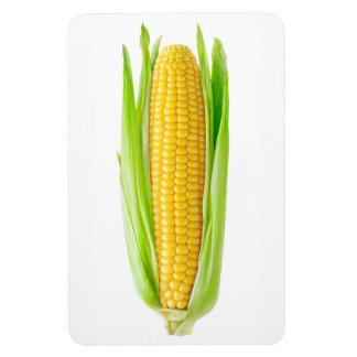 Ear of corn magnet