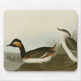 Eared Grebe Mouse Pads