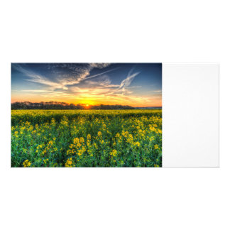 Early April Farm Personalized Photo Card