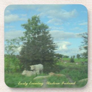 Early Evening  Western Ireland Coaster