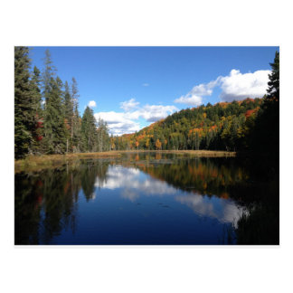 Early Fall in the Algonquin Provincial Park Postcard