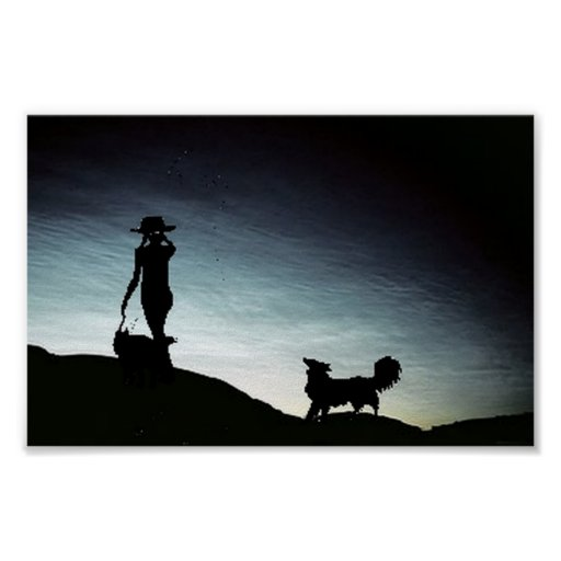 Early morning herd...Border Collie Poster